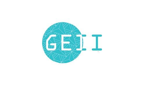 GEII (Génie Électronique et Informatique Industriel)